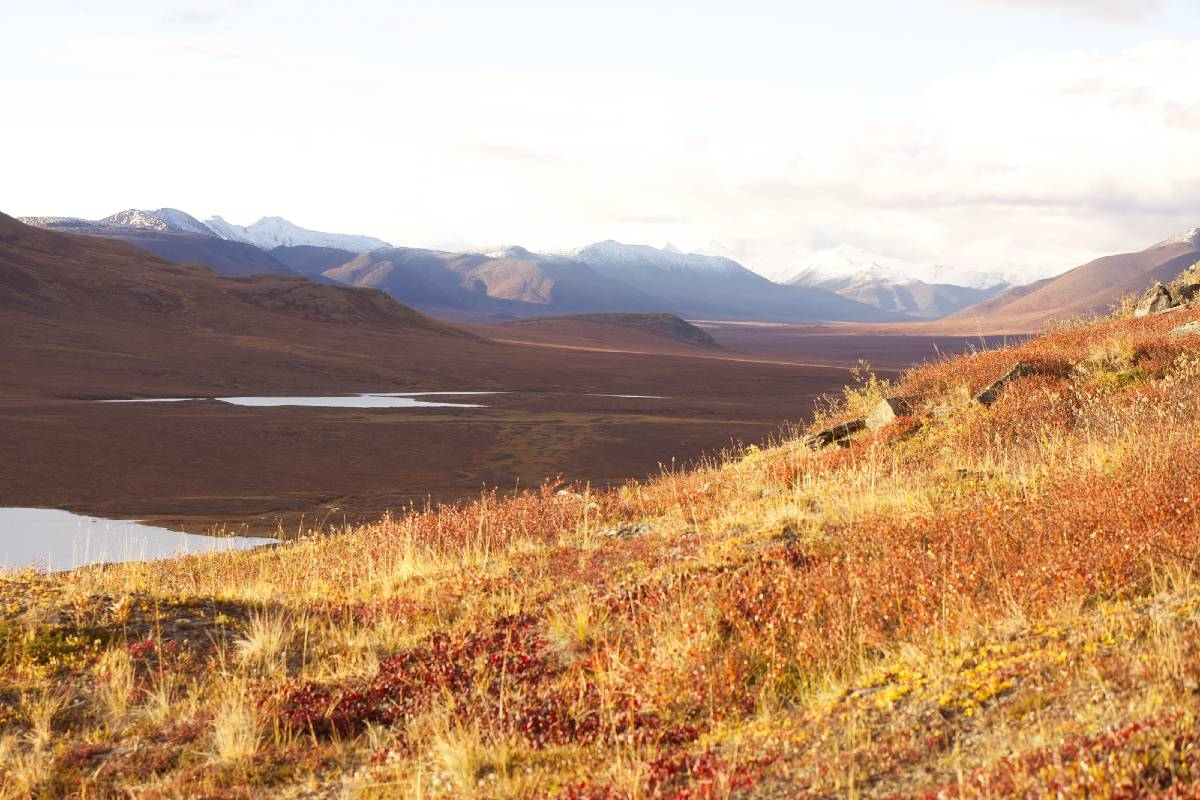 Mountains and a river valley in Gates of the Arctic, one of the more remote Alaska national parks