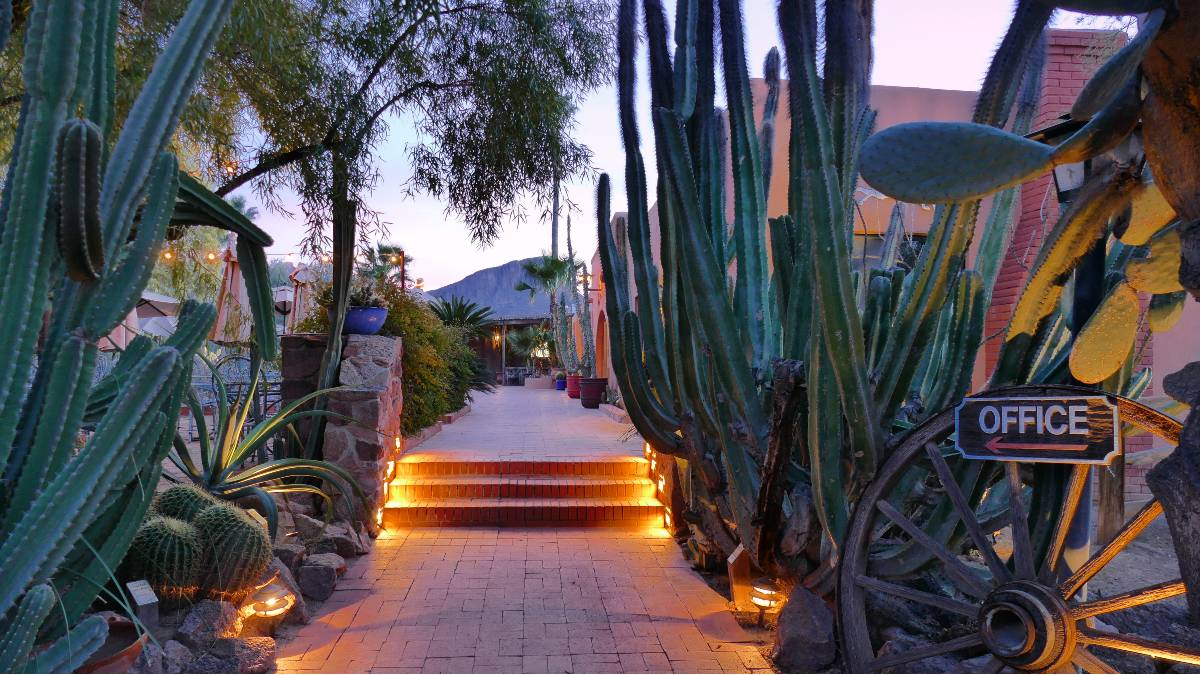 A pathway framed by cactus at White Stallion Ranch in Arizona, one of the most unique hotels near national parks