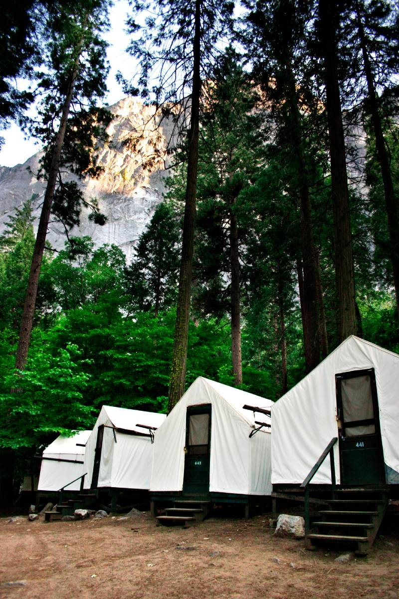 Tents at Curry Village in Yosemite, one of the most unique national park hotels