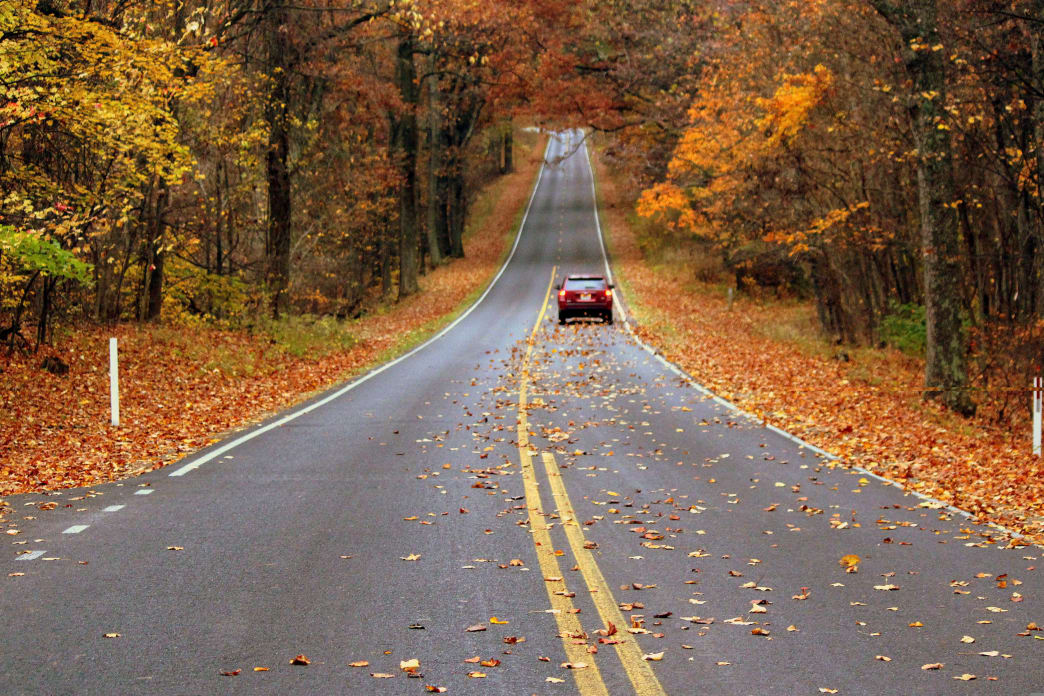Skyline Drive is a perfect way to see the vast colors changing in Shenandoah Valley.