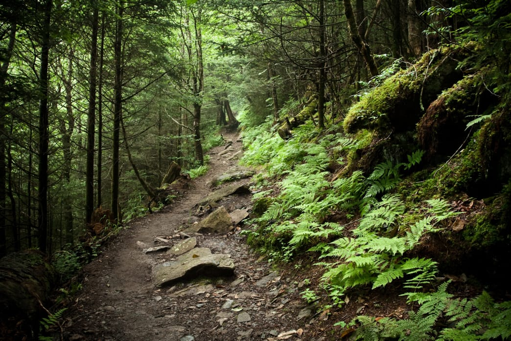 It usually takes about seven days to hike the Great Smoky Mountains section of the Appalachian Trail.