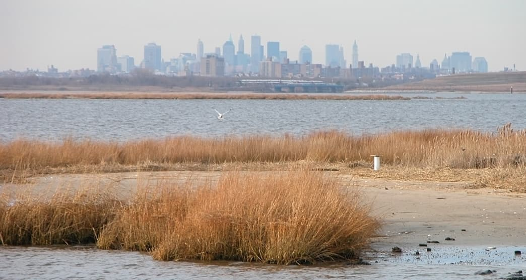 The Jamaica Bay Skyline