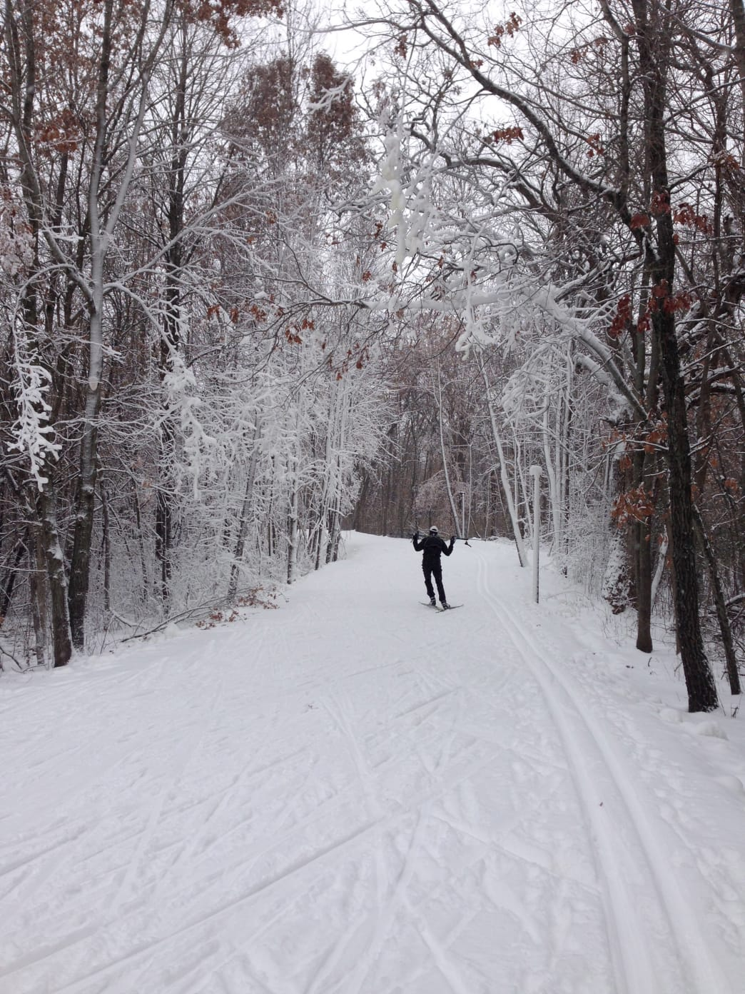 Elm Creek Park Reserve grooms its trails for both skate and classical skiing.
