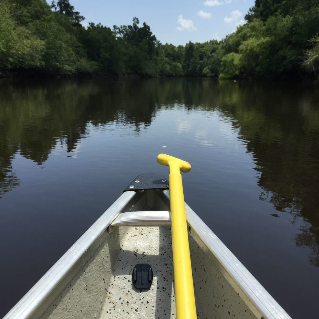 As peaceful as it gets on the blackwater Edisto River