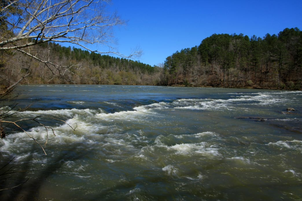 Make sure to check water levels of the Cahaba river before your trip.