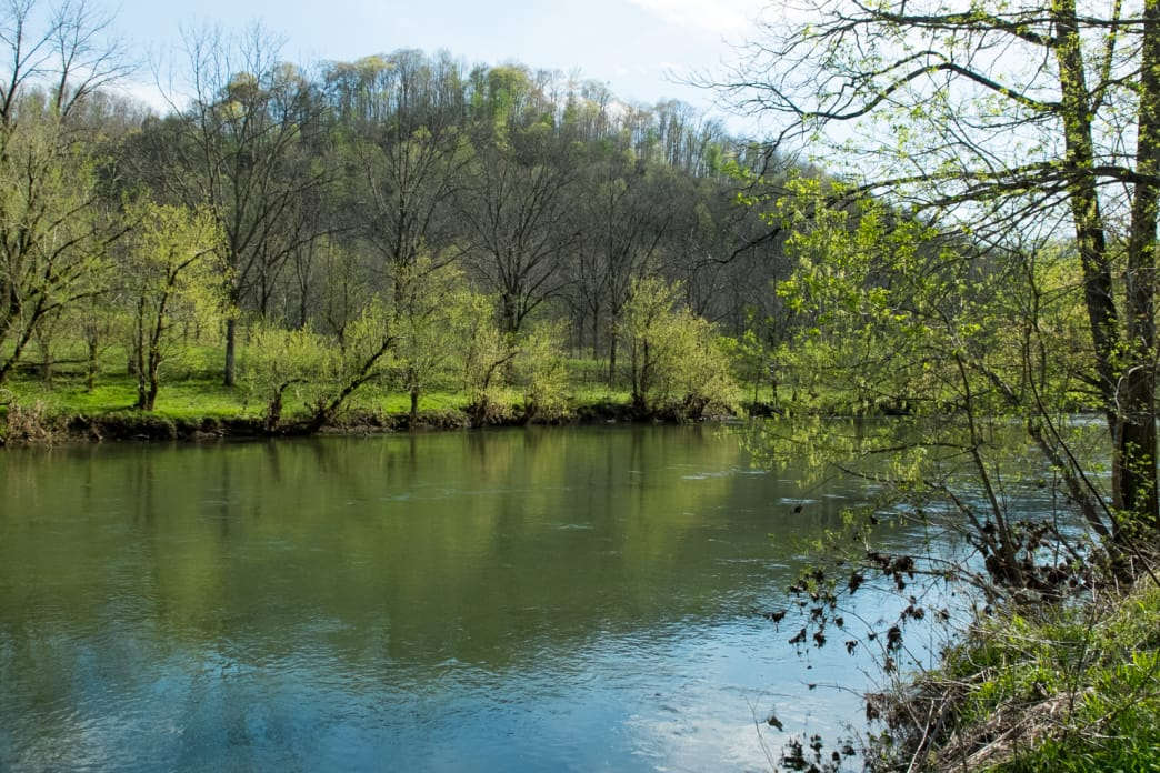 The Middle Fork Holston River is a popular spot for smallmouth bass and sunfish.