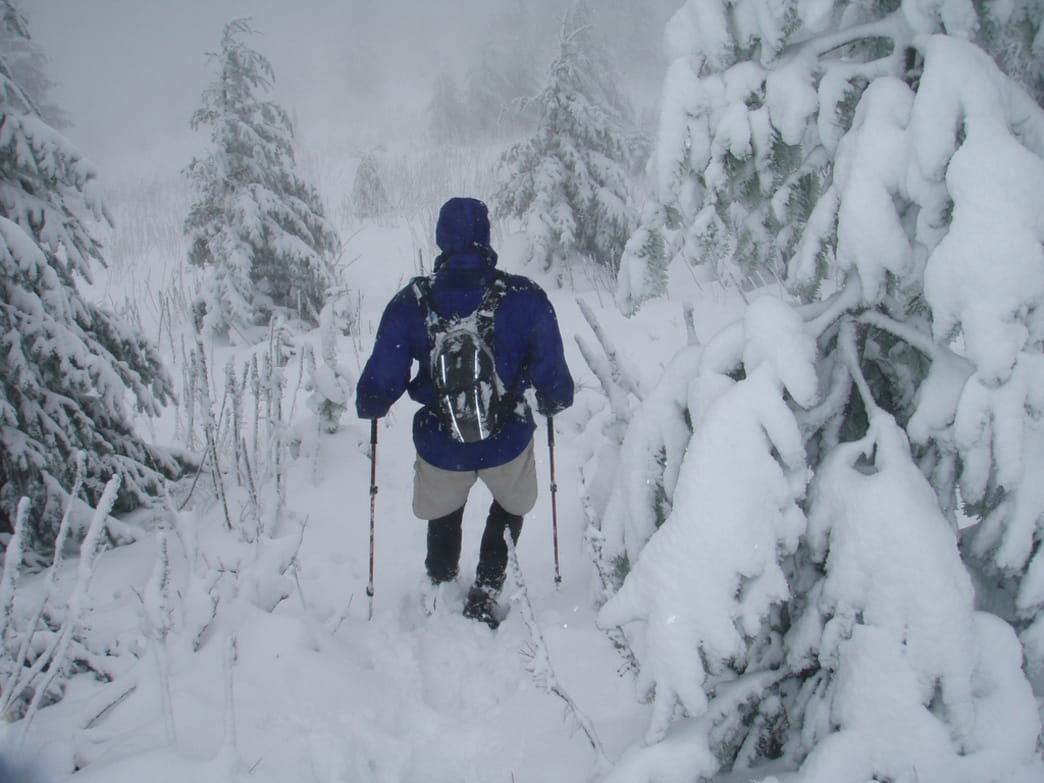 A heavenly winter trek on Mt. Mitchell. Winter in the Blue Ridge is not to be missed.
