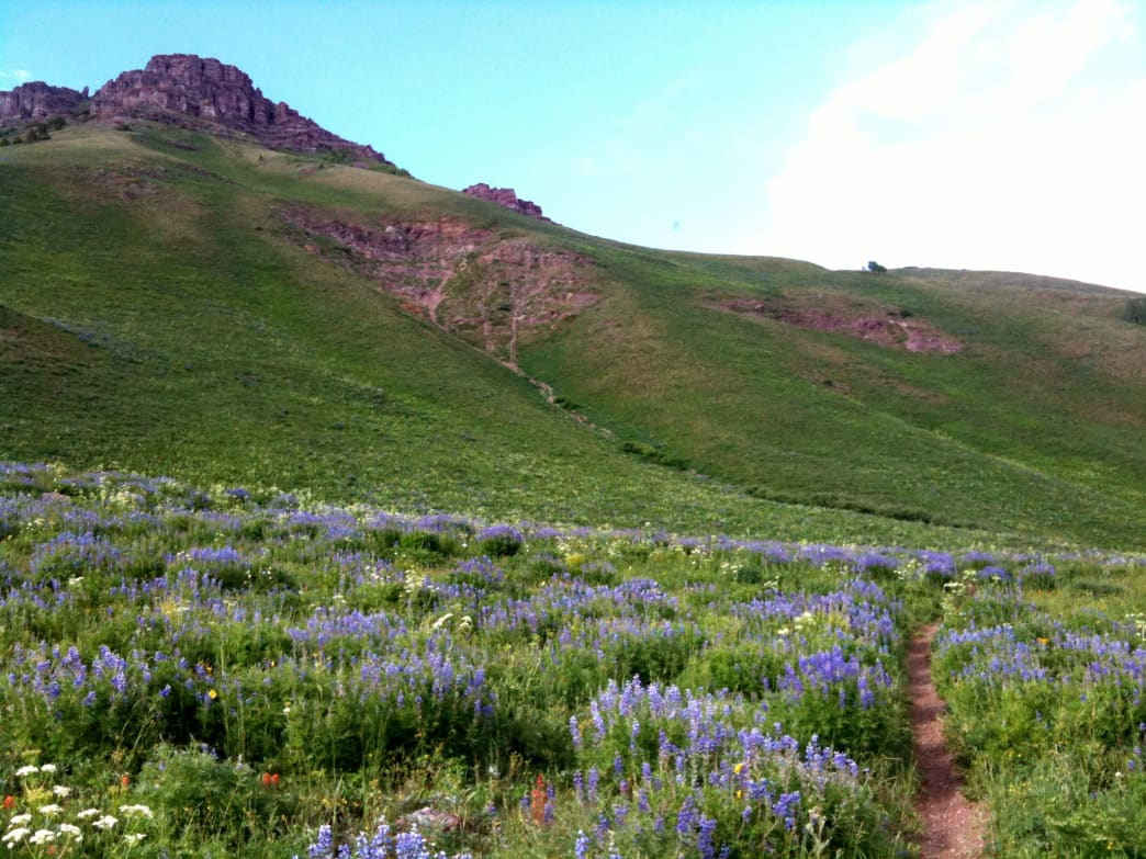 The Teocalli Ridge loop trail is many locals' favorite ride.