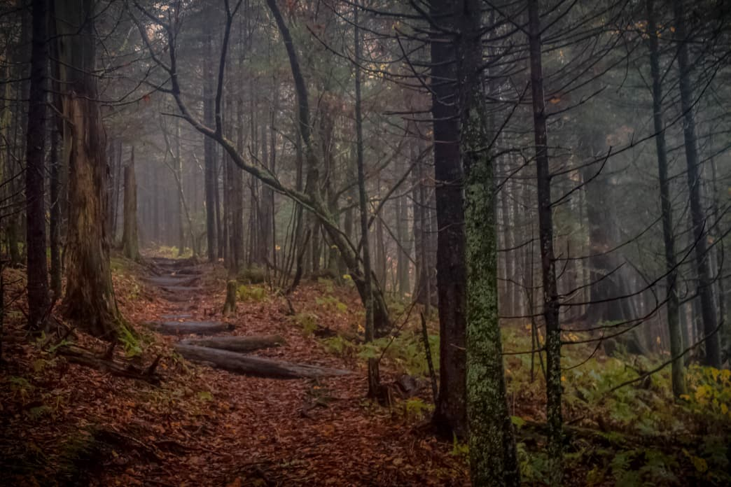 Autumn on the Appalachian Trail.