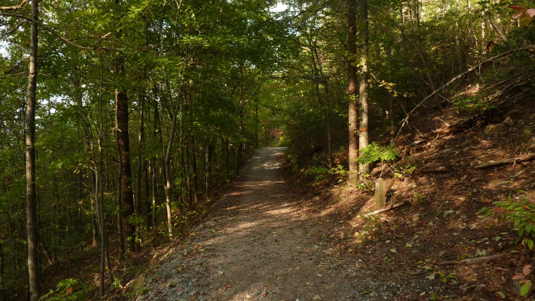 the multitude of trails at Crowders Mountain State Park are Molly's pick for a quick hike