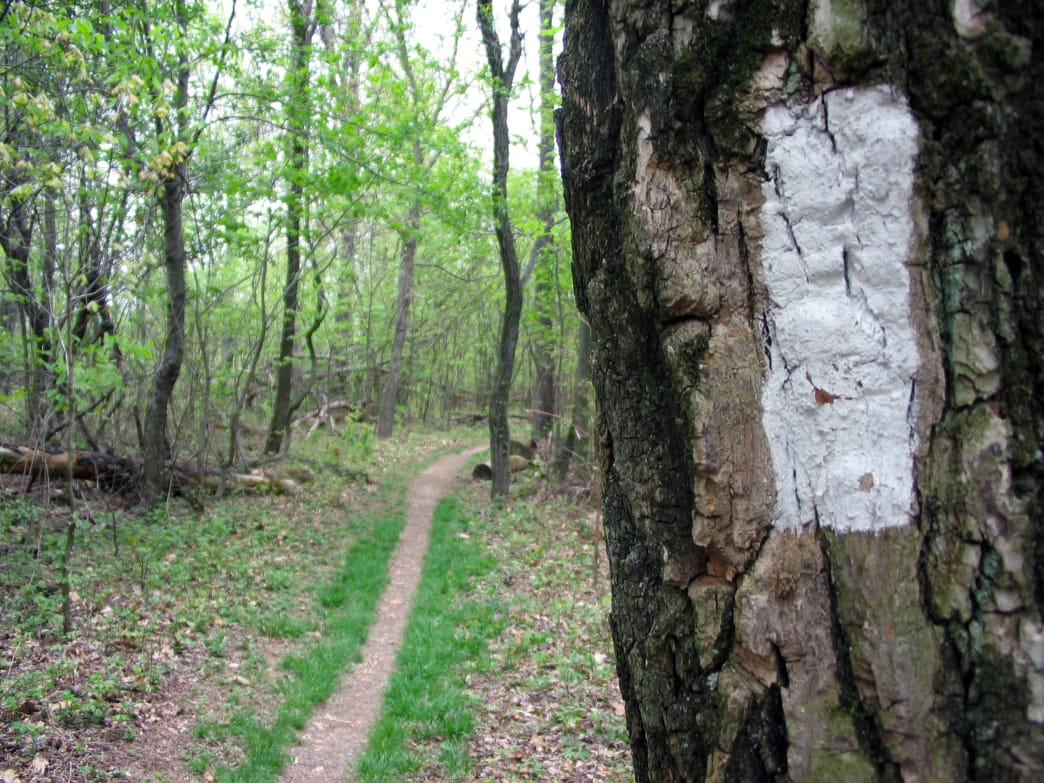 Tackle a portion of the Appalachian trail in the Shenandoah Valley.