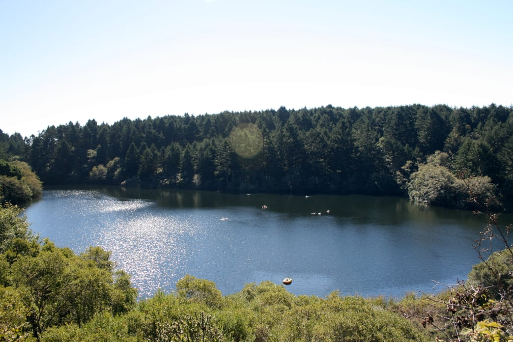Bass Lake in Point Reyes at dusk.