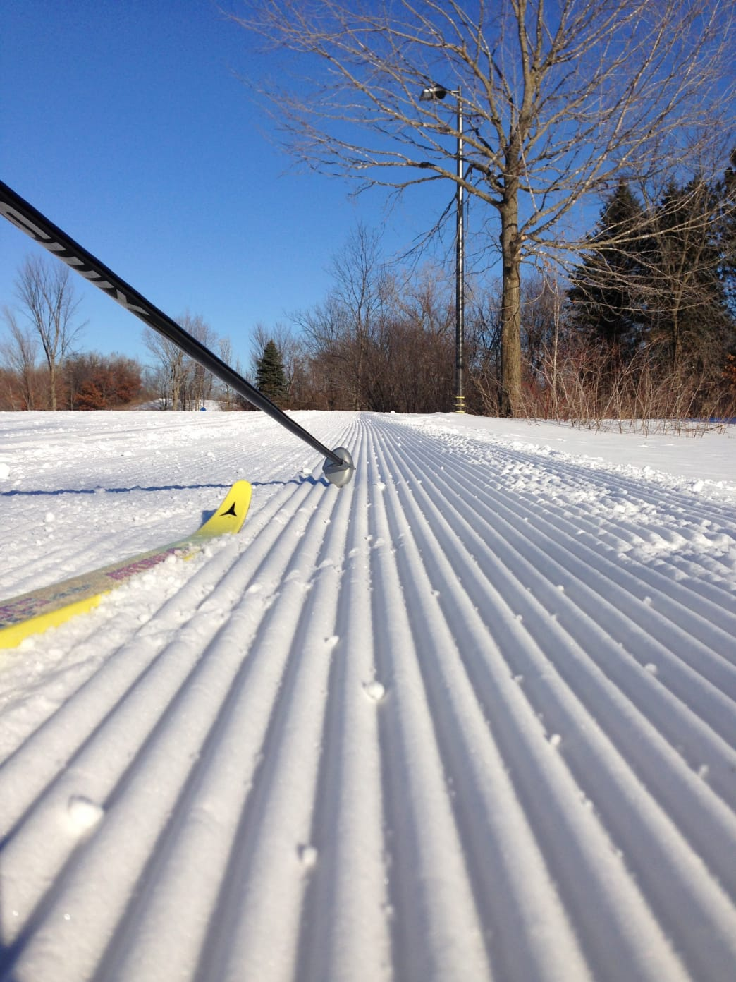 Baker Park Reserve is groomed on a daily basis.