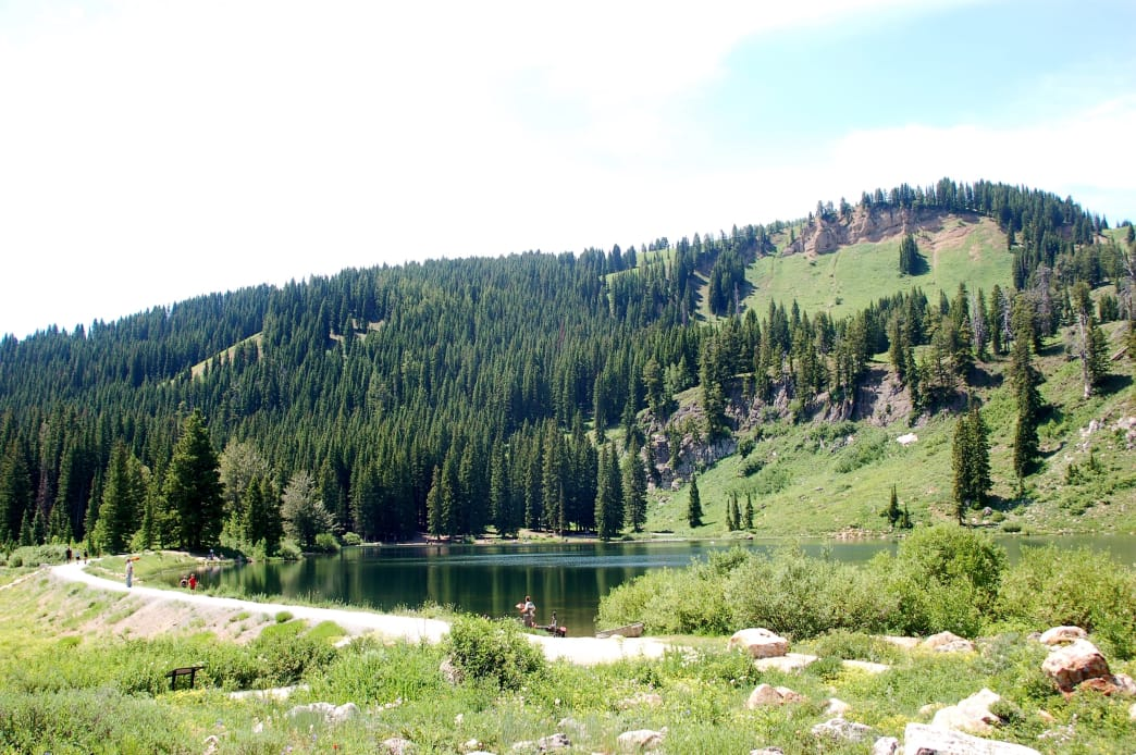 Hike, fish for trout, and enjoy the spectacular camping setting at Tony Grove Lake.
