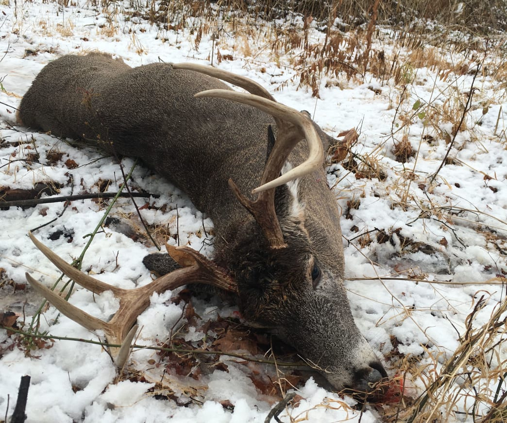 This buck was taken near a doe in early December.