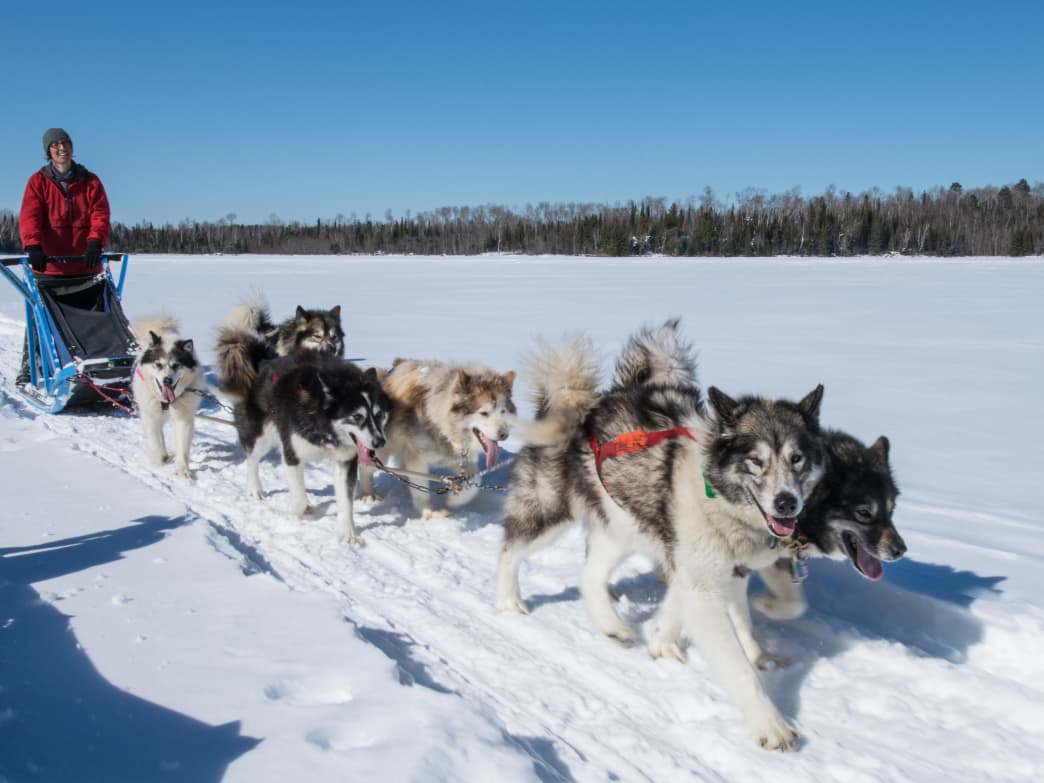 Thrilling and challenging, dog sledding offers another way to appreciate nature and experience snowy landscapes.