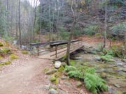 Bridge at Brandy Creek Falls