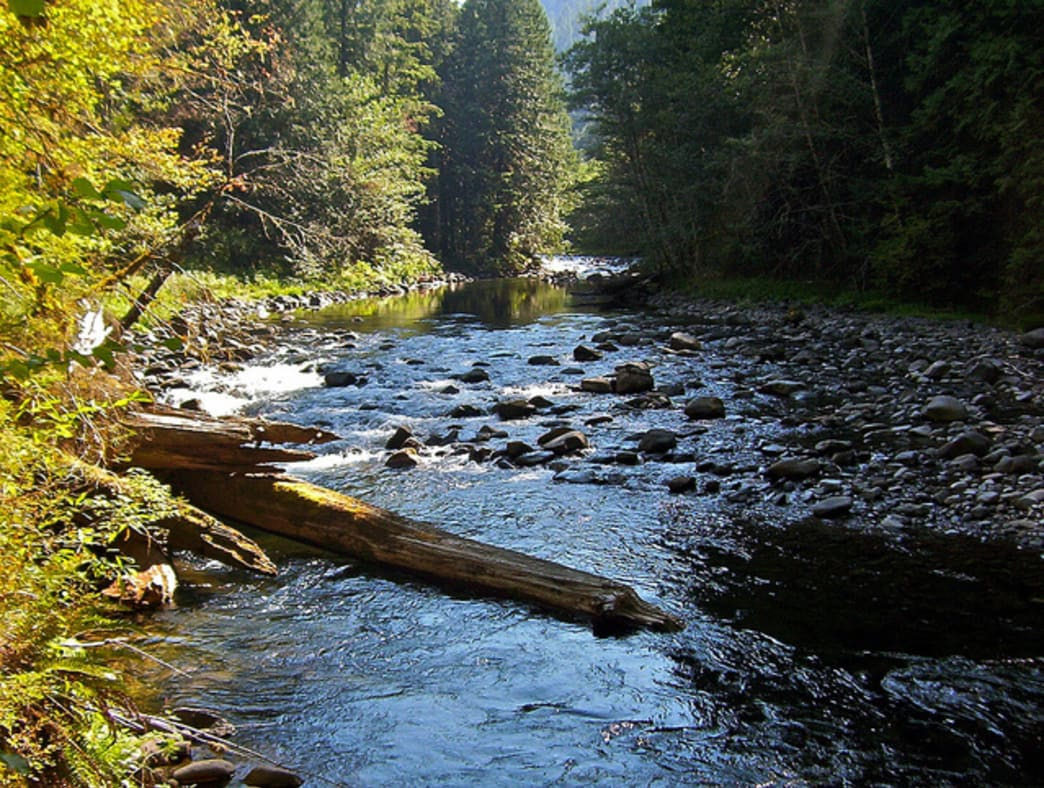 The Salmon River trail is popular with backpackers and hikers.
