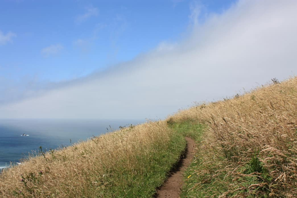 Cascade Head, not far from Devil's Lake State Recreation Area, delivers spectacular coastal views.