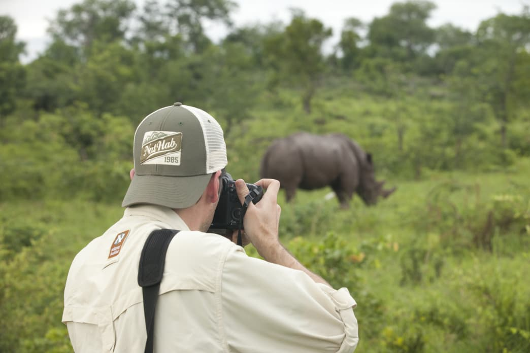 Nat Hab gives you the unique opportunity to see wild animals in their natural habitats.