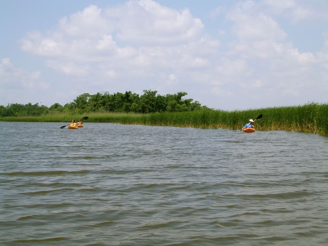 It's important to know your way around The Mobile-Tensaw Delta while paddling.