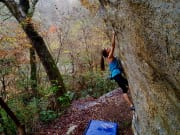 The Riverside Boulders