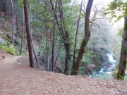Brandy Creek Falls Trail