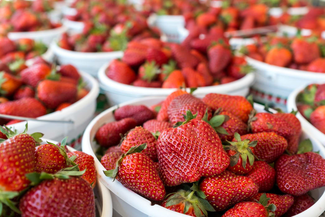 Pick up some fresh strawberries at Mann's Farm in Fort Blackmore.