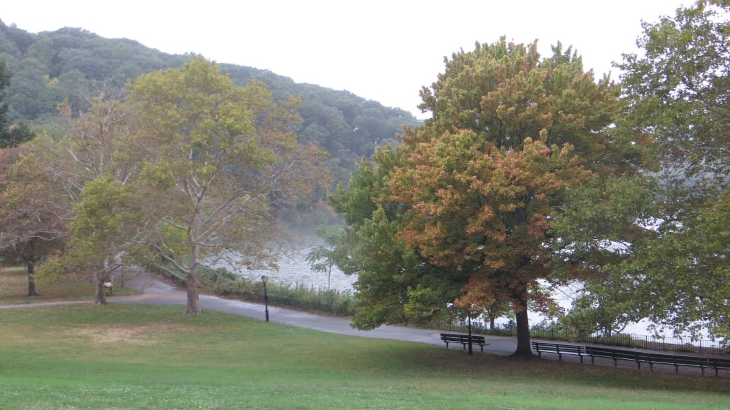 Hard to believe Inwood Hill Park is located right in New York City