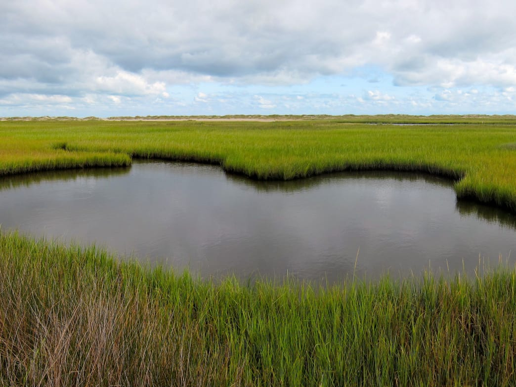 Head over to Fort Fisher to explore and run seven miles of pristine, undeveloped shoreline on the Atlantic Ocean.
