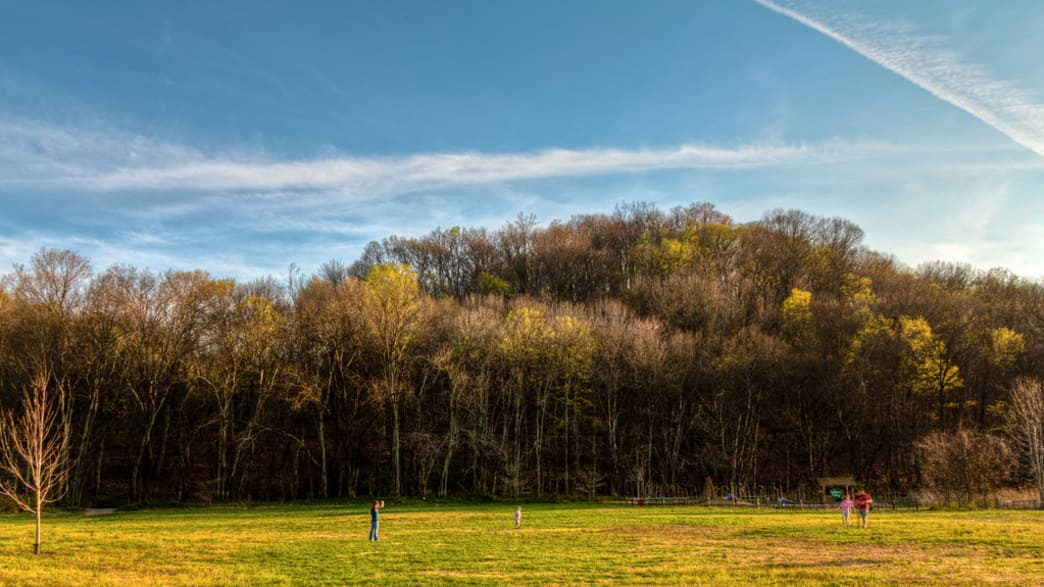 Edwin Warner Park - Harpeth Woods Trail
