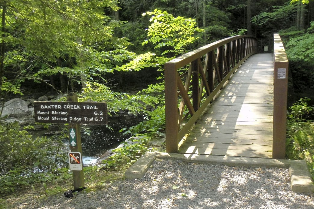 Big Creek loop ends with a 4,000-foot elevation loss over 6 miles on the Baxter Creek Trail.