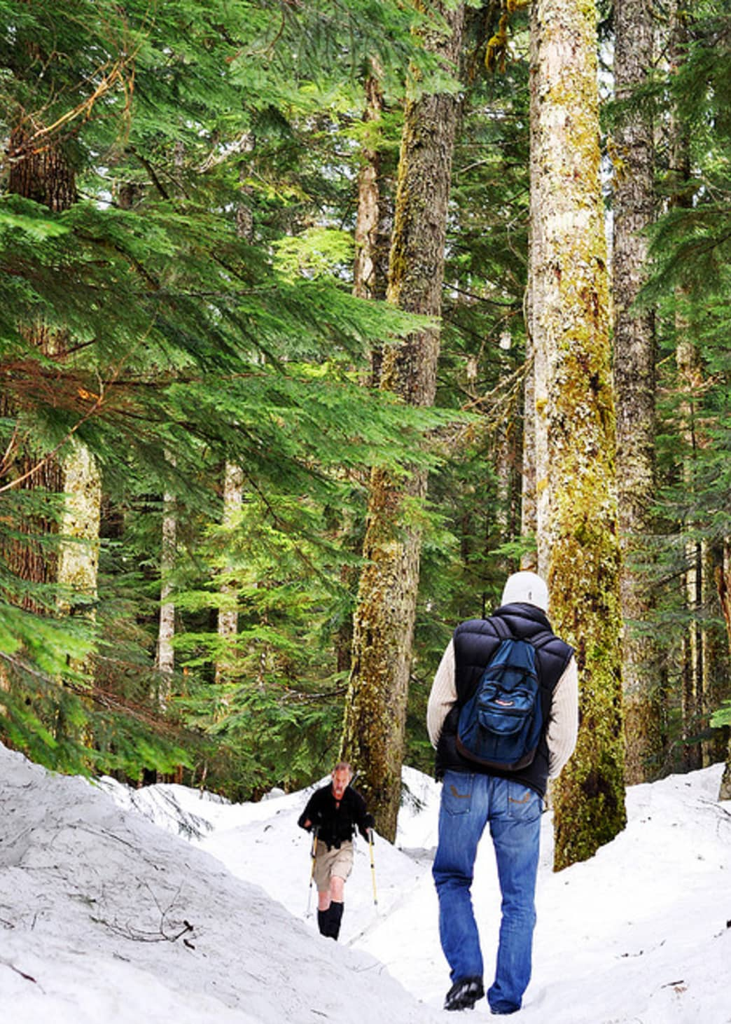 A wintry walk near Denny Creek is great for people and pups.