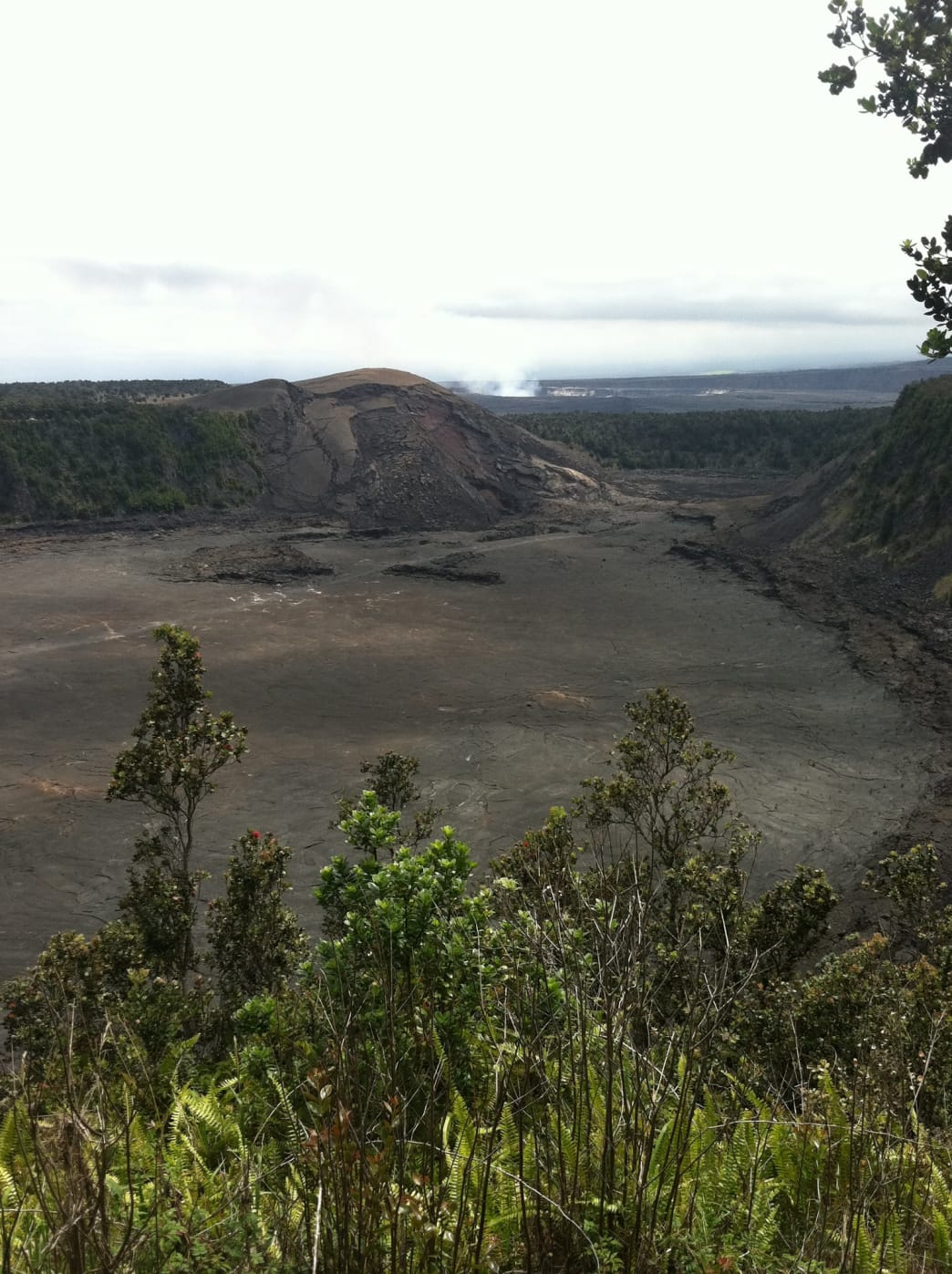 Kīlauea Iki. You can see the trail running through the middle.