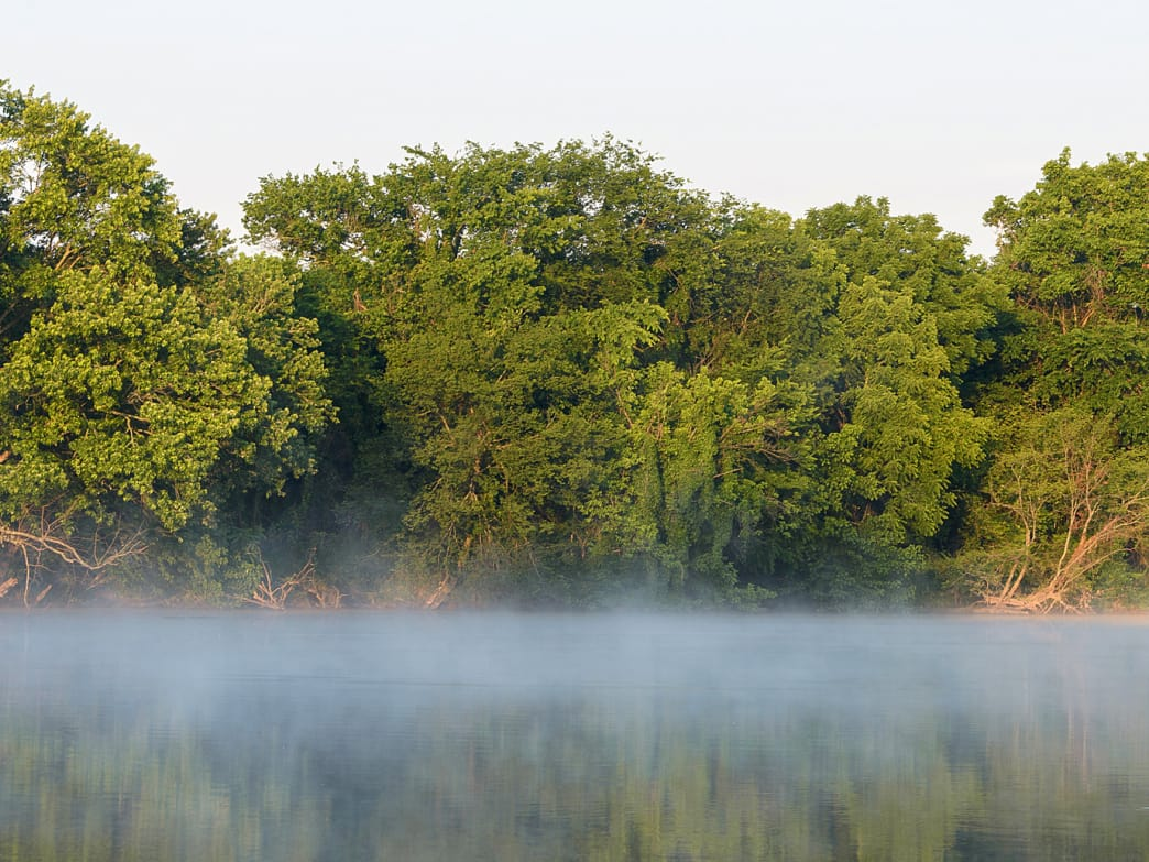 In scenic northwest Alabama, the Elk River weaves through a diverse ecosystem.