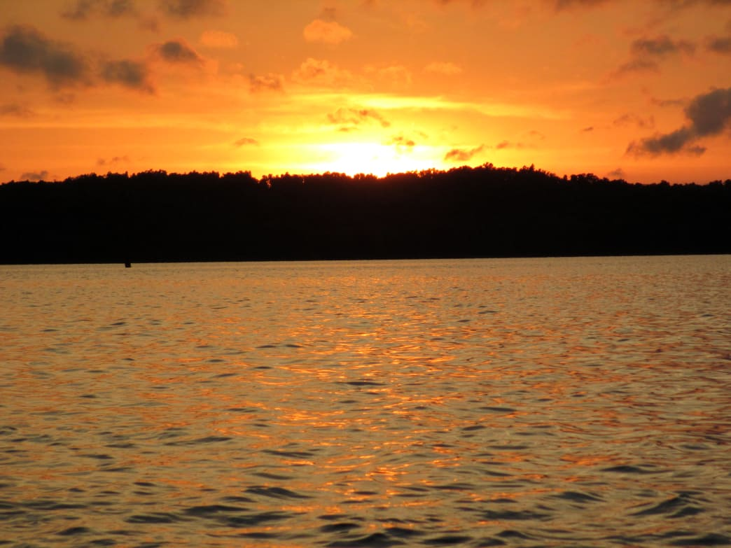 End your kayak trip at beautiful Lake Barkley.