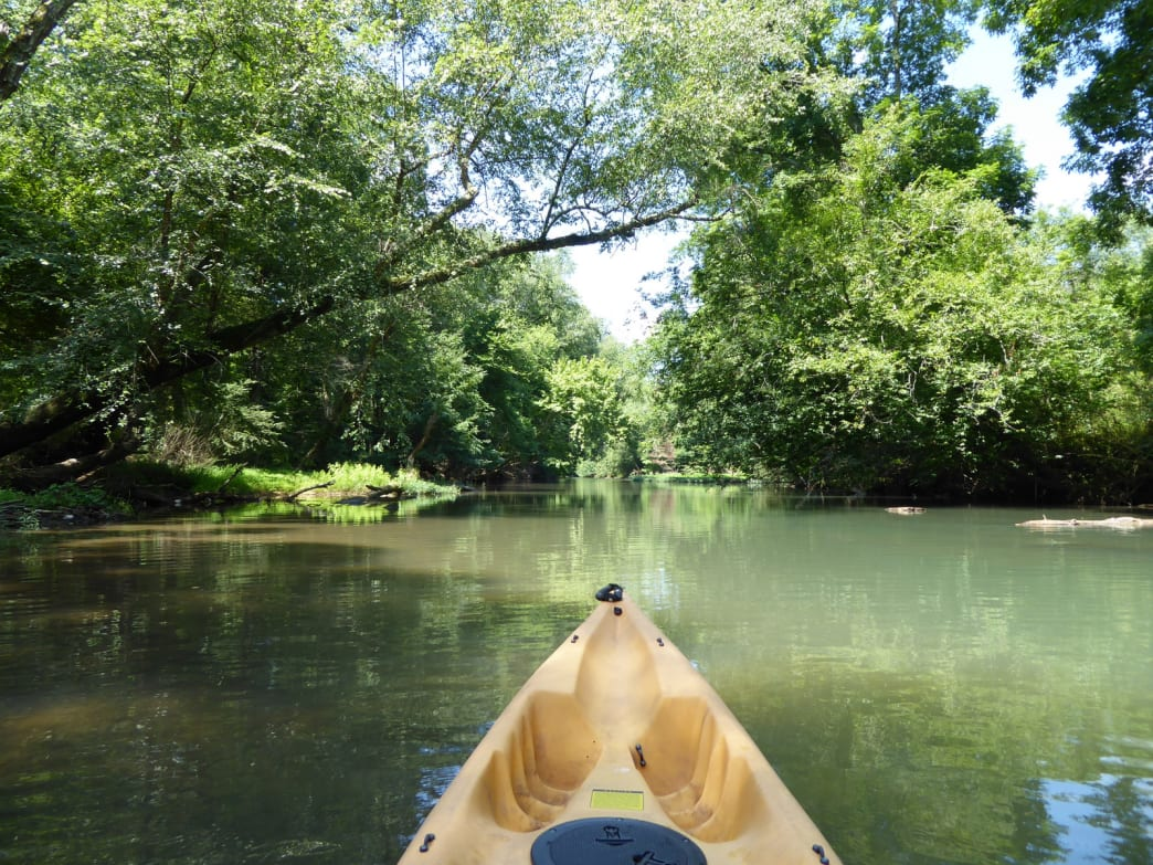 Cypress Creek beckons with flat water for relaxed paddling.