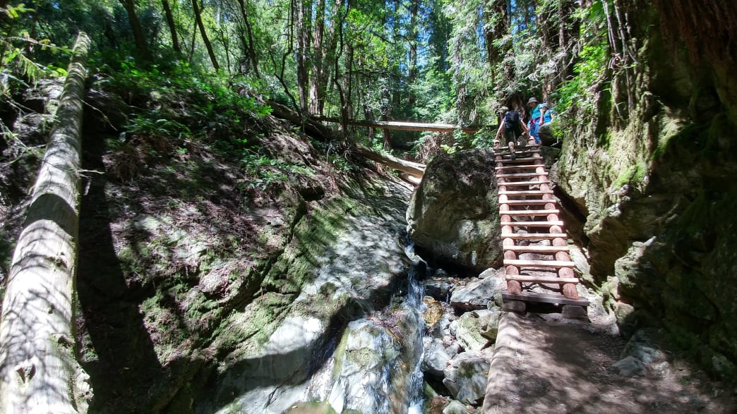 Dipsea Trail - Best Hikes in US
