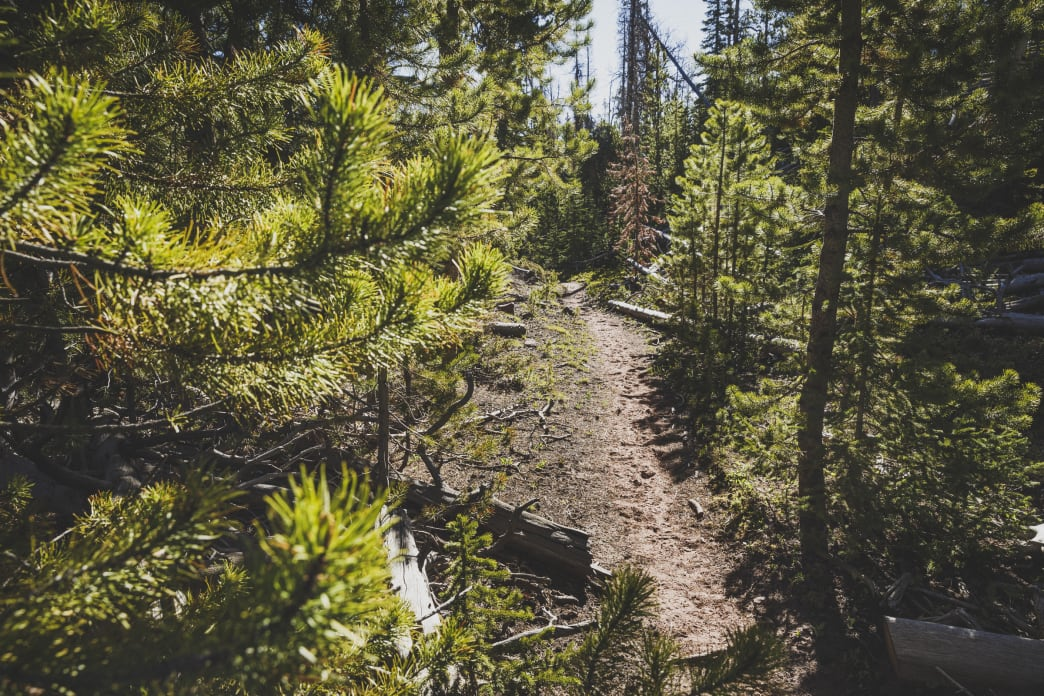 The Uinta Mountains are threaded with trails ideal for backpacking.
