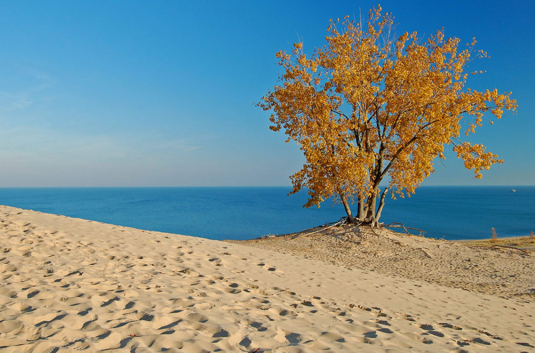 Exploring Indiana Dunes in the fall offers picturesque views and far fewer people.