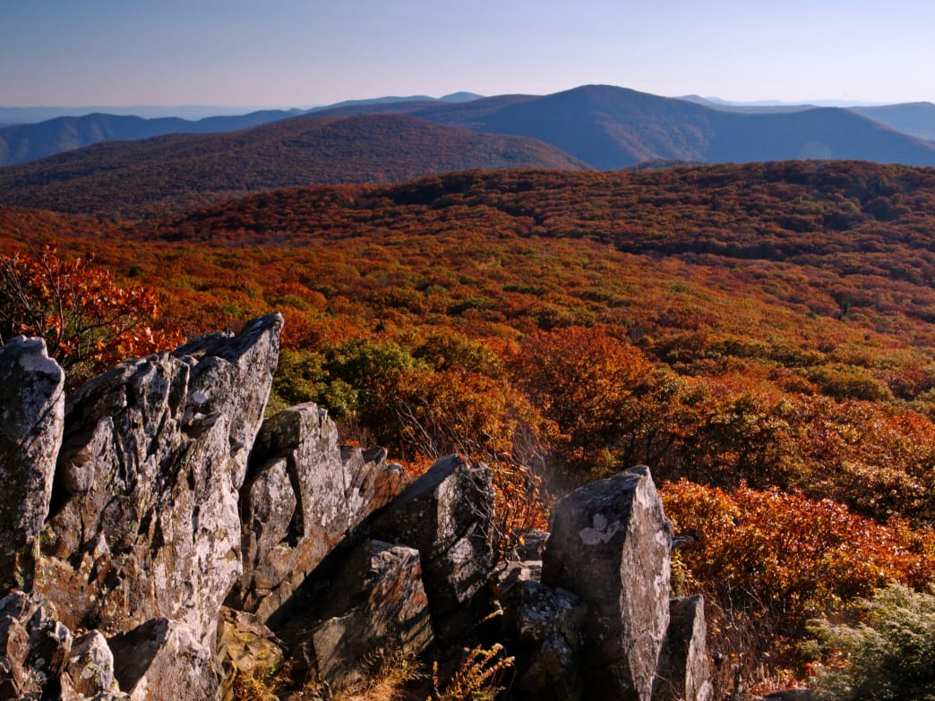 Find great views from Stony Man hike in Shenandoah National Park.