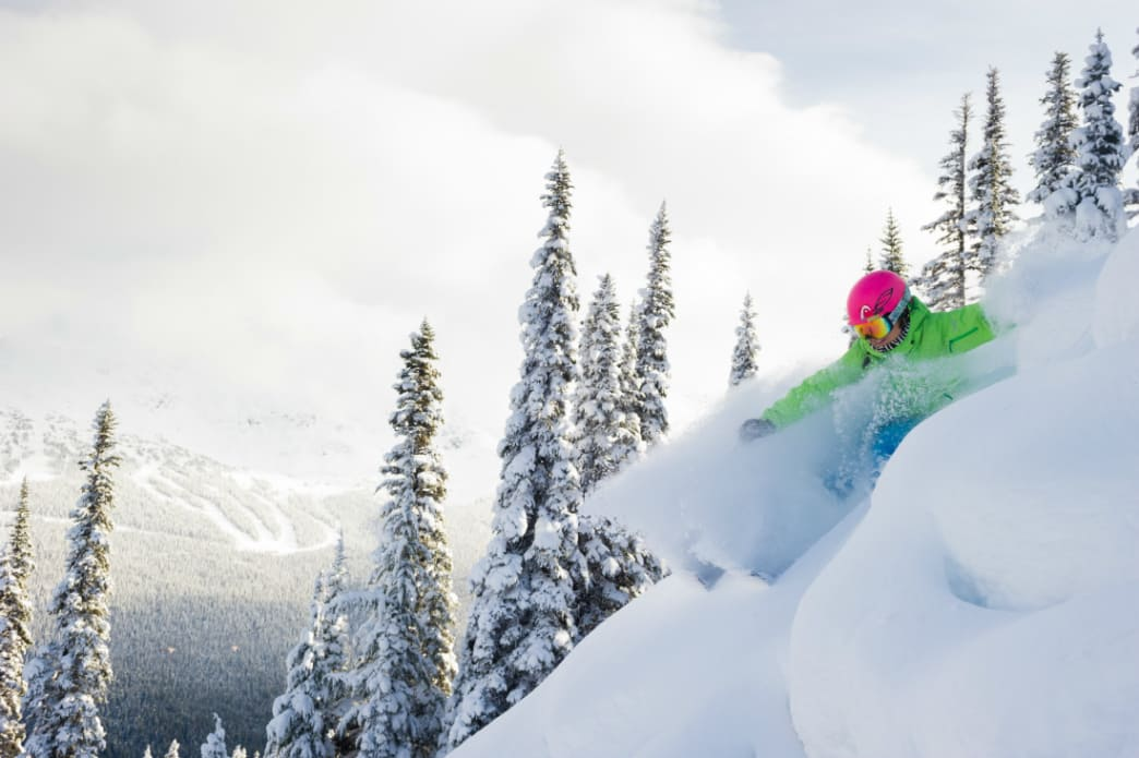 A skier rips through some fresh lines on Whistler Mountain.