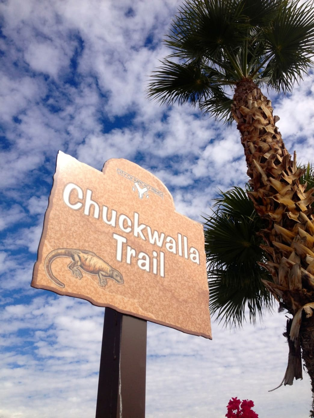 The Chuckwalla Trail is a good option for a trail run.