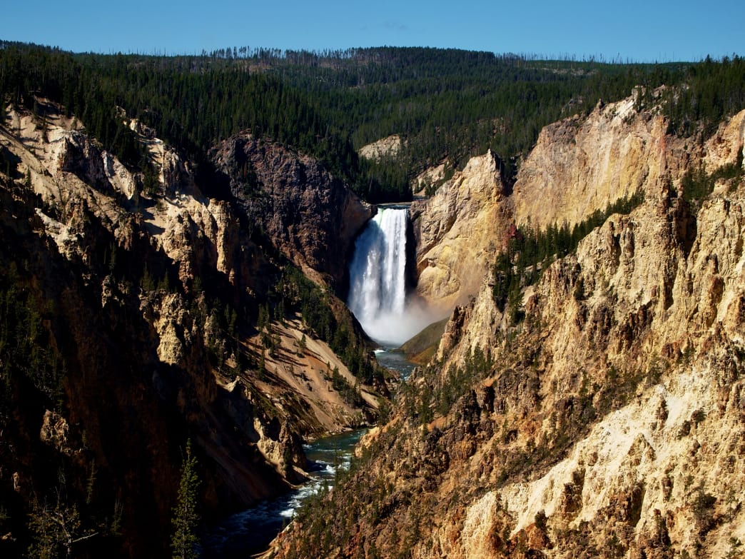 Lower Falls of Yellowstone.