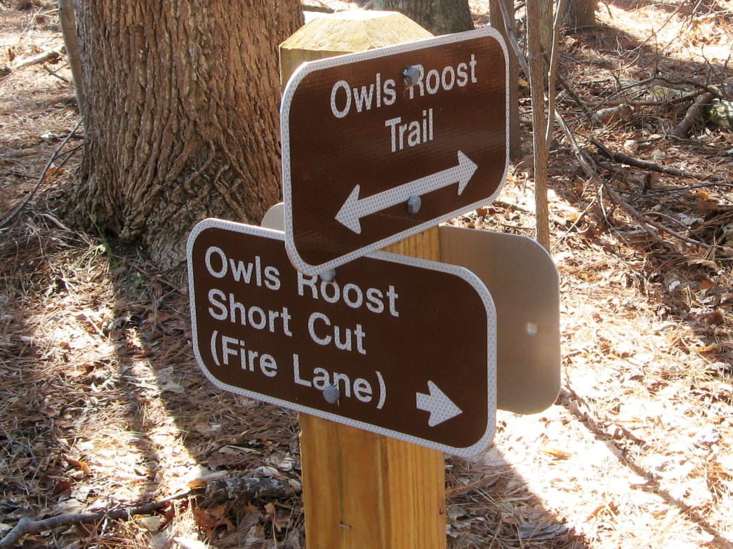 Speed and technicality make Owl's Roost, in Bur-Mil Park, a perennial favorite for Triad mountain bikers.