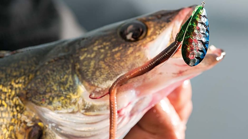 Blades of Glory: The Best Bladed Lures for Spring Fishing