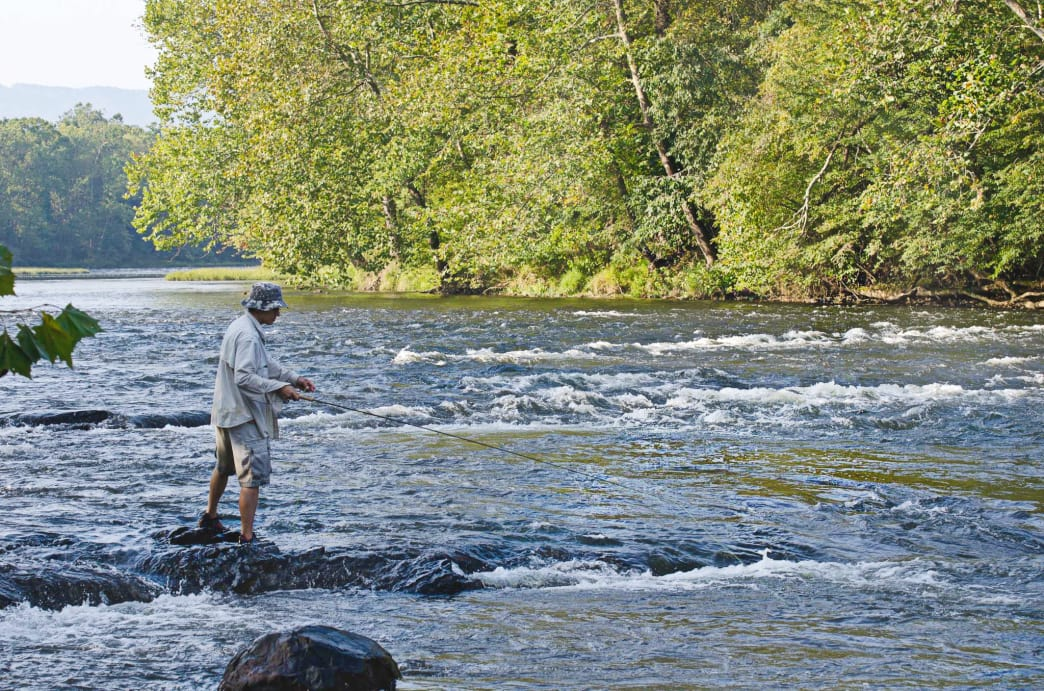 Trout fishing is available year-round in Southwest Virginia.