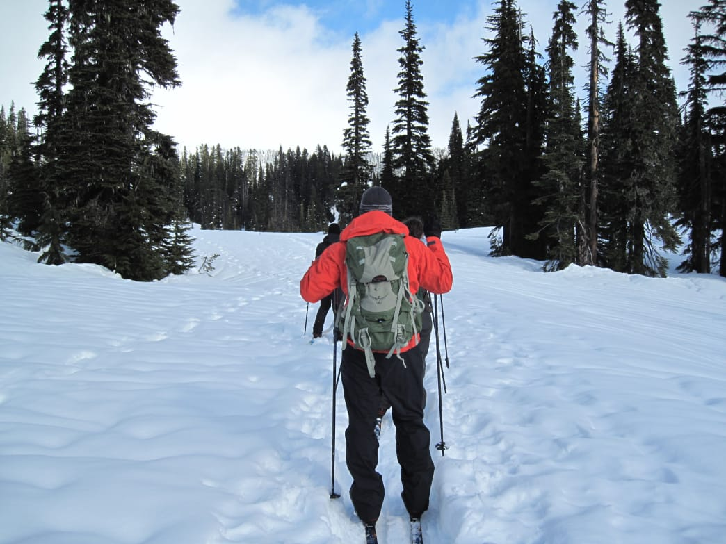 Strap on a pair of cross country skis to explore Mount Rainier National Park in winter.