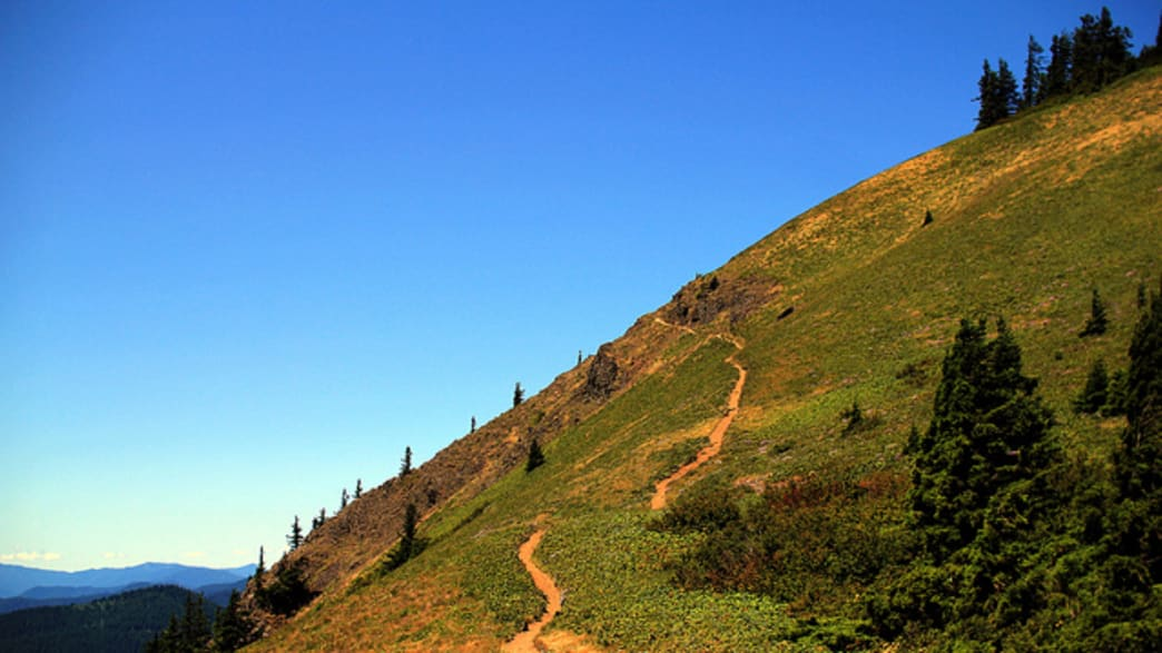 Dog Mountain is one of the most popular (and strenuous) hikes in the Columbia River Gorge.