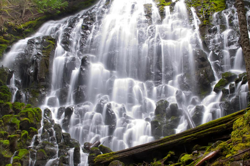Ramona Falls is an unusual yet popular waterfall near Mount Hood.
